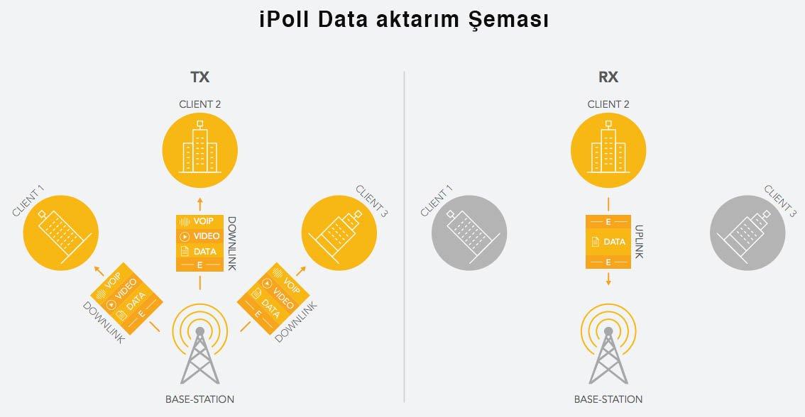 iPoll Data Aktarım Şeması